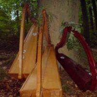 Harfen im Wald