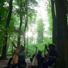 drei Harfengrazien im Zauberlicht